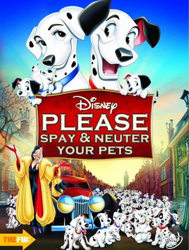 Honest Disney Movie Titles