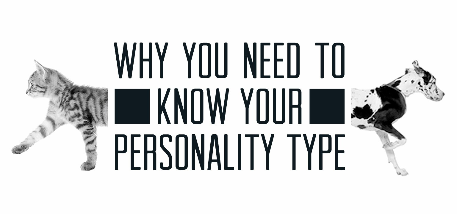 Why You Need to Know Your Personality Type