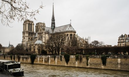 The Unexpected Lesson from the Notre Dame Fire